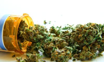 Idaho should closely look after medical cannabis policy