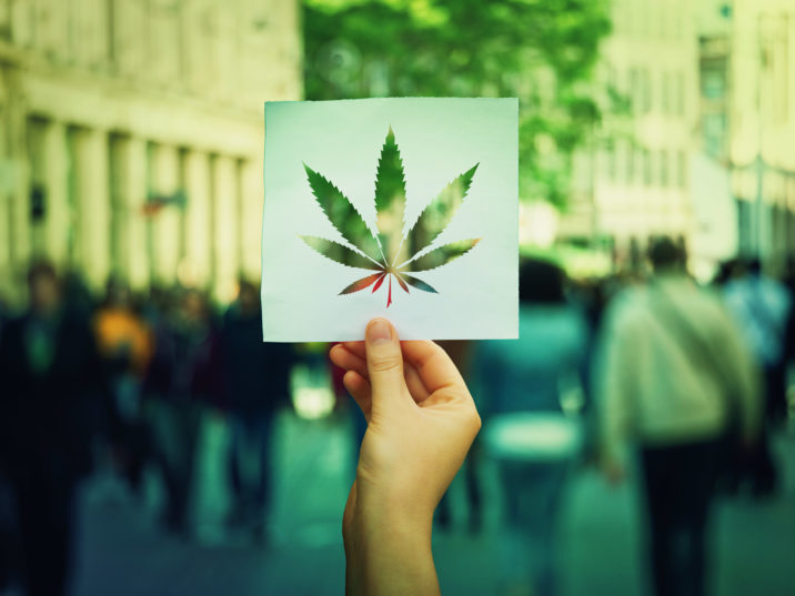 Upcoming Cannabis Trends in 2019