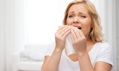 CBD For Allergies - Can It Provide Relief?